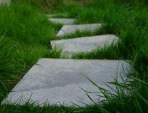 stepping_stones1.jpg
