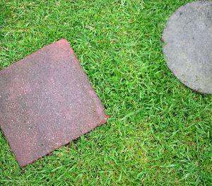 stones_in_grass.jpg