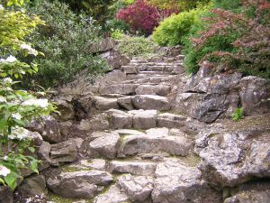 Picture of Garden Steps