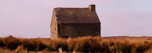house-cropped